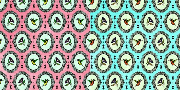 CAPA | Estampa Humming Bird 2